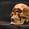 vikingschedel